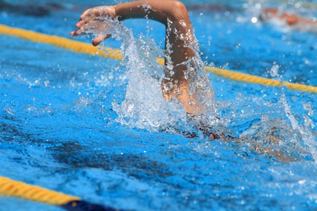 水泳の写真